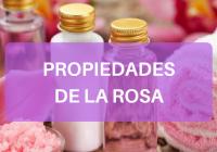 PROPIEDADES DE LA ROSA